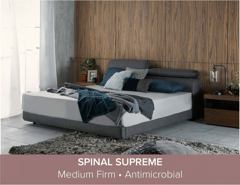 """Apollo Bedframe with Storage and Adjustable Headboard and Spinal Supreme Mattress 12"""""""