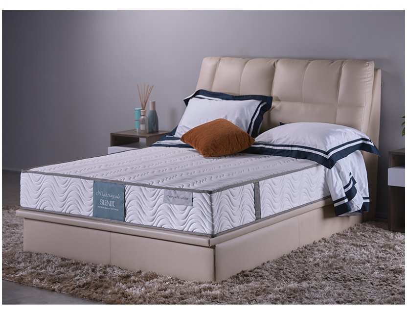 Ola Slim Bedframe (Storage Divan) with Orthopedic Master Mattress