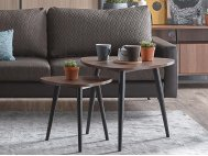 Dansk Coffee Table (Large)