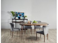 Radium Solid Wood Dining Table with 4 Anne Chairs