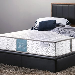 "Orthopedic Master Mattress - 10"" thickness"