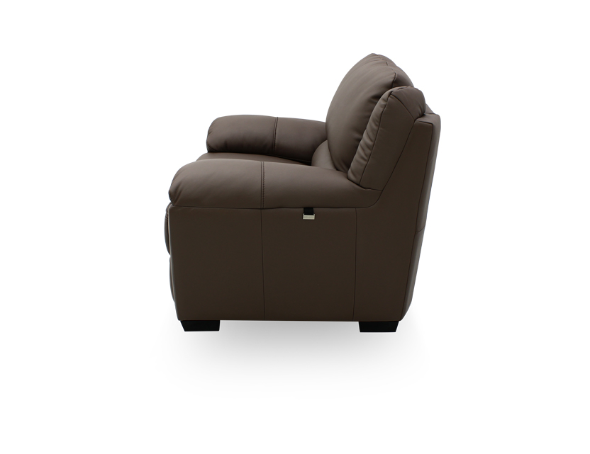 Delaere 1 Seater Leather Motorised Recliner Armchair